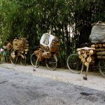 Loaded bicycles near Garubhasa in Assam. India.