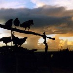 Sunset at Turbi. Northern Kenya.