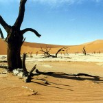Death Valley in Namib Naukluft Park. Namibia.