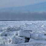 Fog at the horizon stands for open water ••• Nevel aan de horizon staat garant voor ijsvrije oceaan